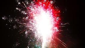 Los fuegos artificiales hermosos muestran en la celebración del Año Nuevo Los fuegos artificiales más grandes para el fondo Fuego almacen de video