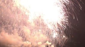 Los fuegos artificiales que se encienden para arriba celebran en el cielo nocturno almacen de metraje de vídeo