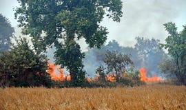Los fuegos queman las cosechas cerca de campos camboyanos de la matanza Imagen de archivo