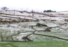 Los ganaderos vertieron en un cielo despejado de la ladera ligeramente nevada Imagen de archivo