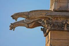 Los Gargoyles de Notre Dame Fotos de archivo