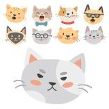 Los gatos dirigen el animal doméstico de moda nacional felino de los caracteres decorativos divertidos animales lindos del ejempl stock de ilustración