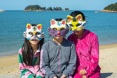 Los gatos están detrás - el Maurauders enmascarado Fotografía de archivo