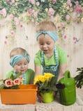 Los gemelos de las muchachas de tres años cuidan para las flores, Fotografía de archivo libre de regalías