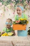 Los gemelos de las muchachas de tres años cuidan para las flores, Foto de archivo