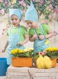 Los gemelos de las muchachas de tres años cuidan para las flores, Foto de archivo libre de regalías