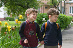 Los gemelos idénticos llevaron a cabo las manos Fotografía de archivo libre de regalías