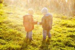 Los gemelos llevaron a cabo las manos Fotografía de archivo libre de regalías