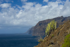 Los Gigantes cliffs Royalty Free Stock Photo