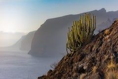 Los Gigantes jest miasteczkiem przybrzeżnym lokalizować w zarządzie miasta Santiago Del Teide, w południe wyspa TenerifeLos Gigan obrazy stock