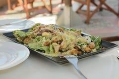 Los girocompases griegos del plato en una placa rectangular con las verduras y los verdes foto de archivo