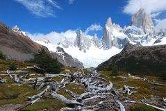 Los Glaciares Nationaal Park, Mening van Onderstel Fitz Roy, zuidelijk Patagonië, Argentinië Stock Fotografie