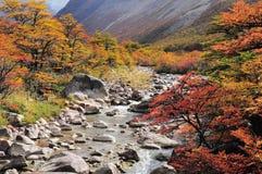 Los Glaciares National park. Royalty Free Stock Image