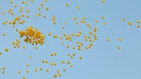 Los globos amarillos vuelan metrajes
