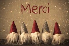 Los gnomos de la Navidad, copos de nieve, medios de Merci le agradecen fotografía de archivo