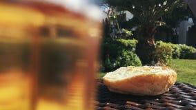 Los gorriones picotean el pan de la tabla en un día soleado almacen de video