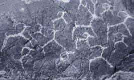 Los gráficos antiguos en las rocas Altai imagen de archivo libre de regalías