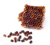 Los gránulos de la abeja y un pedazo de células de la miel se aíslan en un fondo blanco Remedio natural para el aumento de la inm Fotografía de archivo libre de regalías