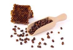 Los gránulos de la abeja y un pedazo de células de la miel se aíslan en un fondo blanco Remedio natural para el aumento de la inm Imágenes de archivo libres de regalías