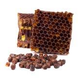 Los gránulos del pan de la abeja y un pedazo de células de la miel se aíslan en un fondo blanco Remedio natural para el aumento d Fotografía de archivo