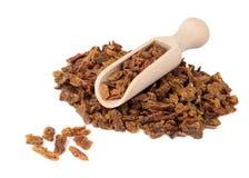 Los gránulos del propóleos en una pala de madera se aíslan en un fondo blanco Pegamento de la abeja Productos de la abeja Apither Imagen de archivo libre de regalías