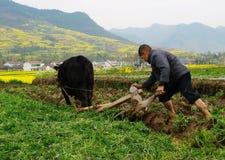 Los granjeros aran sus campos adentro Fotografía de archivo