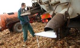 Los granjeros checos ordeñan protesta Foto de archivo libre de regalías