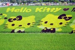 Los granjeros crean hola a Kitty Images en un campo del arroz Imagen de archivo libre de regalías