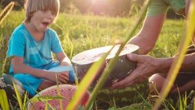 Los granjeros engendran e hijo que come la sandía en el campo de la granja orgánica foto de archivo
