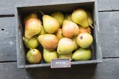 Los granjeros frescos comercializan la fruta - texto natural, estilo del vintage Foto de archivo libre de regalías