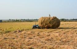 Los granjeros llevan la paja a su hogar Fotos de archivo