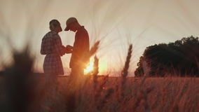 Los granjeros trabajan en el campo del trigo, comunican, miran la tableta Puesta del sol hermosa sobre el campo almacen de video