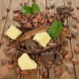 Los granos de cacao, la manteca de cacao y el cacao se forman imagenes de archivo