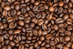 Los granos de café asados, pueden ser utilizados como fondo Macro de la textura de los granos de café Fotografía de archivo libre de regalías