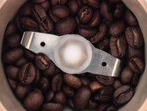 Los granos de café asados se muelen en una amoladora de café Imagen de archivo