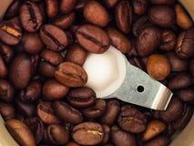 Los granos de café asados se muelen en una amoladora de café Imágenes de archivo libres de regalías