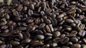 Los granos de café frescos se cierran para arriba metrajes