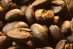 Los granos de café huelen el aroma del expreso fresco foto de archivo