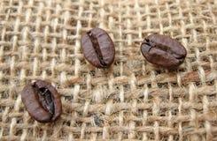 Los granos de café se cierran para arriba Fotografía de archivo libre de regalías