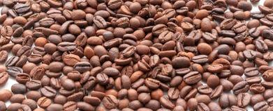 Los granos de café se cierran para arriba Foco selectivo foto de archivo