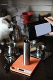 Los granos de café se vierten en una amoladora de café Vacie la escritura de la etiqueta Gato en el backgorund Fotos de archivo