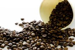 Los granos de café fluyen de la taza del Libro Blanco en el fondo blanco Fotografía de archivo