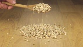 Los granos de la cebada de perla consiguen bastante sueño de una cuchara de madera en una pila de cebada de perla almacen de metraje de vídeo