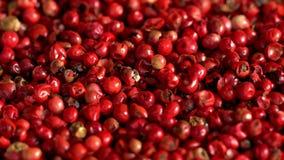Los granos de pimienta rosados colocaron en una tabla de cocina Macro extrema de las bayas Himalayan de una pimienta concepto de  metrajes