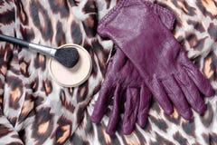 Los guantes de las mujeres de cuero púrpuras con el cepillo de la grasa-pintura del polvo con la bufanda del color en la tabla de Imagenes de archivo