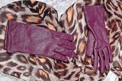 Los guantes de las mujeres de cuero púrpuras con la bufanda coloreada Fotografía de archivo libre de regalías