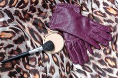 Los guantes de las mujeres de cuero púrpuras con la grasa-pintura del polvo Imagenes de archivo