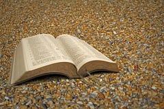 Los guijarros de la playa abren la biblia Imagen de archivo