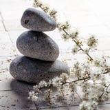 Los guijarros en equilibrio con la primavera blanca fresca florecen para la meditación Foto de archivo libre de regalías