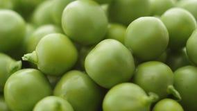 Los guisantes verdes frescos giran Cierre para arriba almacen de video